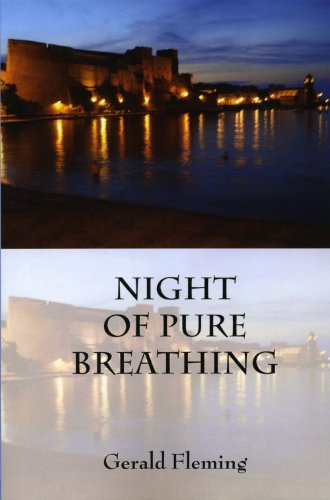 Image for NIGHT OF PURE BREATHING